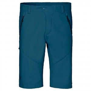 ACTIVE TRACK SHORTS MEN - Moroccan Blue #1502551-1800