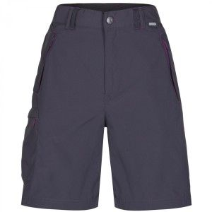 Regatta Chaska Shorts Iron
