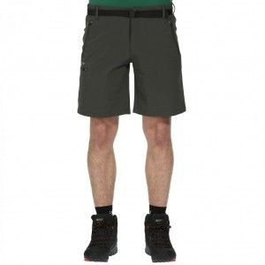 Xert Stretch Shorts II - Seal Grey